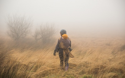 What's with all the babywearing photography?